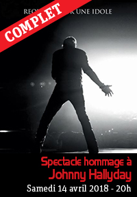 Spectacle hommage à Johnny Hallyday
